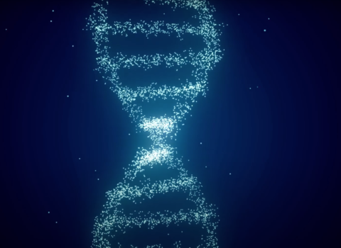 Animation of DNA helix